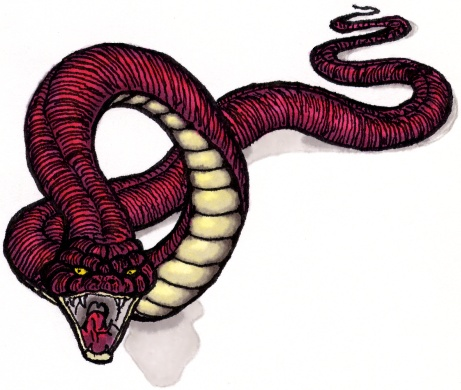 Image Gallery Serpent